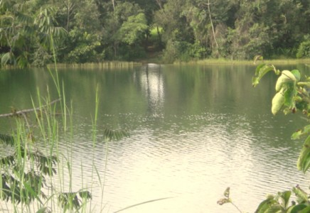 Agricultural-Farmland-for-Sale-in-Tocantins-Brazil
