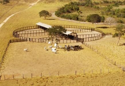 Livestock-Farm-for-Sale-in-Mato-Grosso-Brazil-002