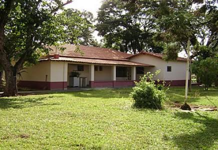 Raw-Land-for-Sale-in-Mato-Grosso-do-Sul-Brazil